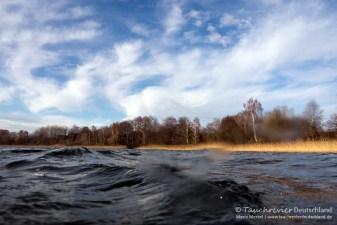 Parsteiner See, Tauchen im Parsteiner See, Tauchen in Brandenburg