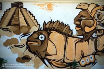 Grafitti, Flora und Fauna in Mexico, Tauchen Cenoten