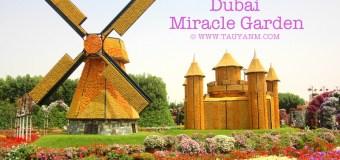Travel Vlog: Dubai Miracle Garden UAE – (Photos & Video) #mydubai #dubaiblogger