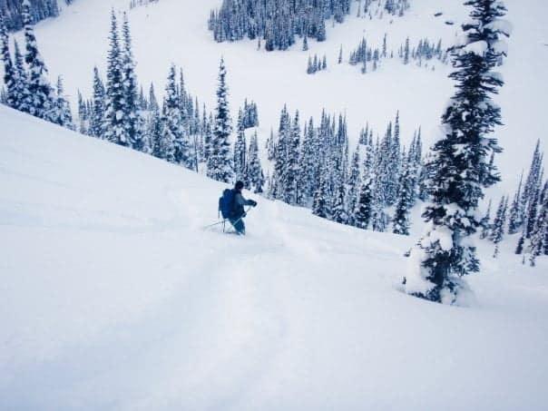 tele skiing