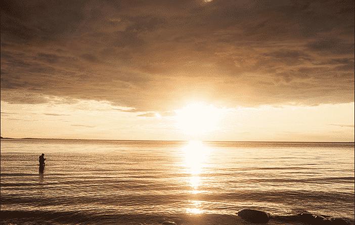 Life Reflection