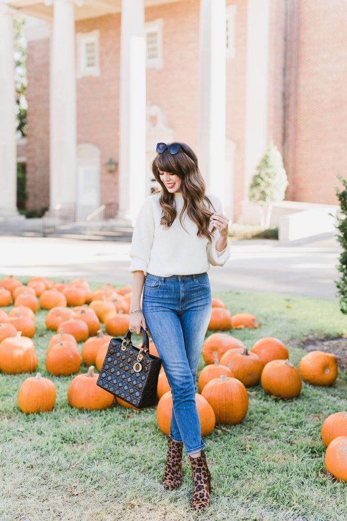 pumpkin-76_preview