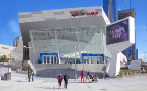 Ripley's Aquarium of Canada - photo credit to B+H Architects