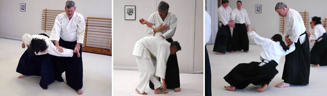 Jerry DeWees, sandan, began practicing Aikido in 1973. He has practiced in Iowa City, Des Moines, Tallahassee, New York, and St. Paul, and has been at TCAC since 1992. His primary influences have been Yoshimitsu Yamada Shihan and Akira Tohei Shihan. Jerry is very grateful to all of the people who have taught and trained with him over the years, and he tries very hard to pass along what he has learned from them to the students at TCAC.