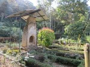 Tea-Garden