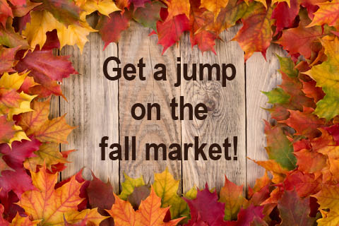 jump-on-fall-market