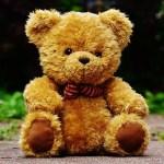 teddy-1444642_640