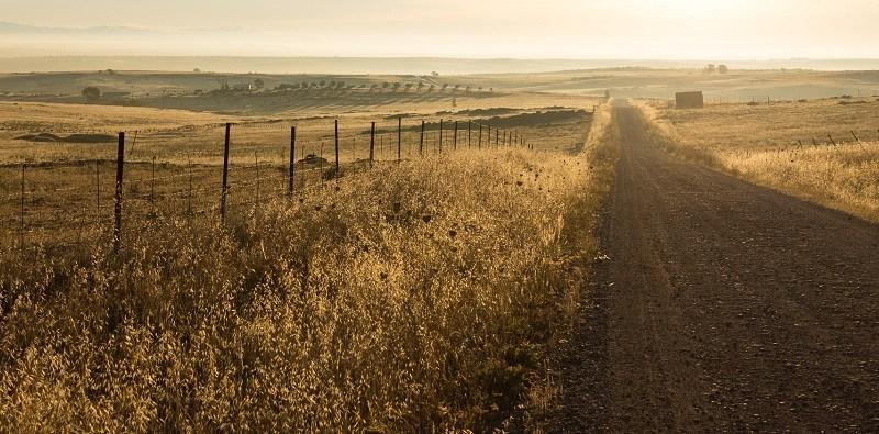 wide dirt road poem