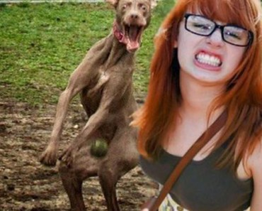 Photobomb Dog funny pictures awkward family photos worst tattoos bad tattoos horrible random pics strange bizarre wtf fail stupid people photobombs funny pictures awkward family photos worst tattoos bad tattoos horrible random pics strange bizarre wtf fail stupid people photobombs
