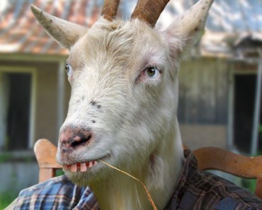 goat man redneck man Funny Pictures Random Humor Epic Fails worst family photos bad family photos weird worst tattoos bad tattoos stupid people crazy people funny names funny memes animal memes awkward goofy