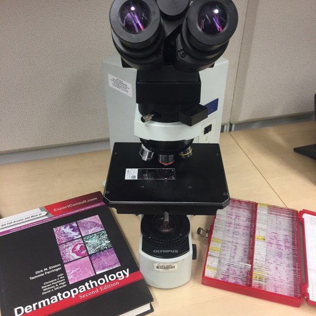 Dermatopathology microscope