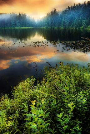 green lake phone backgrounds wallaper