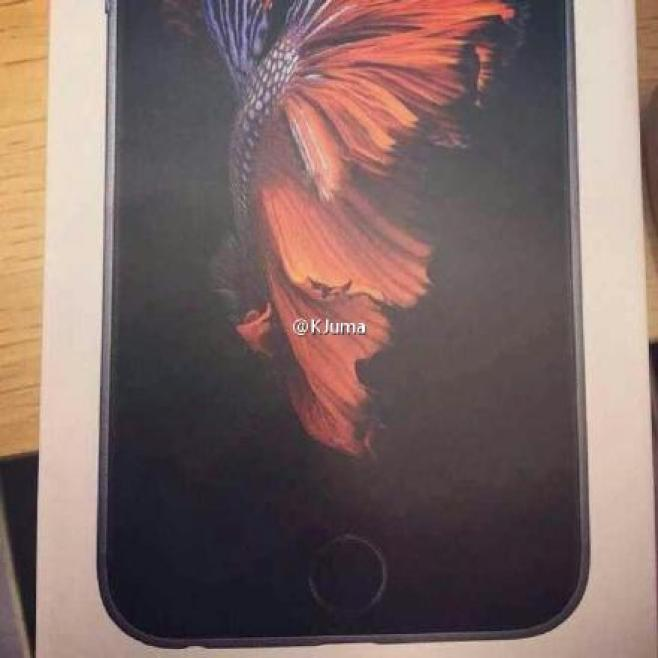 iPhone 6s front box
