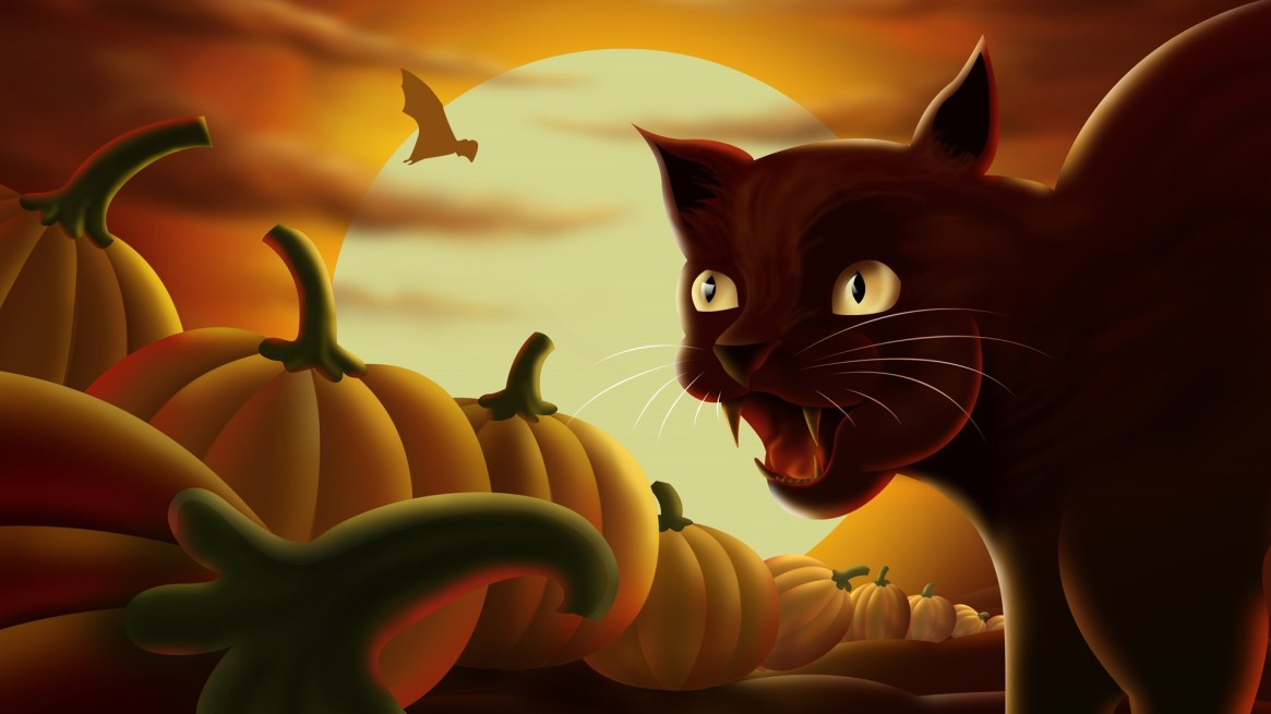 horror-halloween-cat-witch