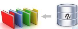 Comment sauvegarder la Base de données de votre site WordPress automatiquement.