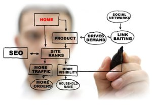 need for a seo specialist to gain more traffic through SEO and website visibility for your company
