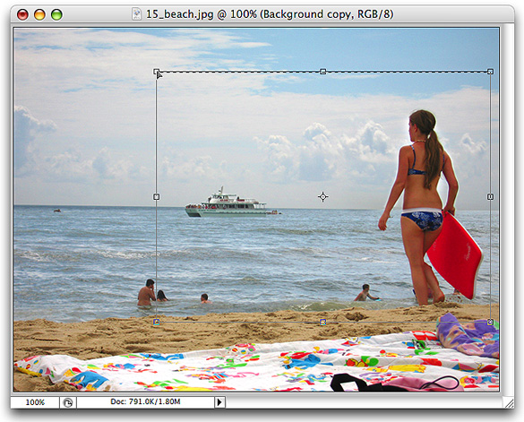 scale the selection , learn how to crop image in photoshop cs5