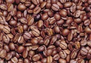 coffe-bean