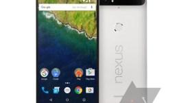 LG_Nexus_5X_Leak