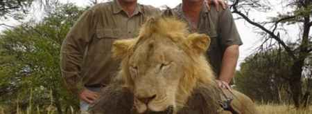 "Walter Palmer (left) and one the Lions he shot in ""Africa"""