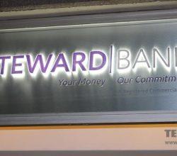 Zimbabwean banks, African Banks, Econet Zimbabwe, TN Bank, Financial Services