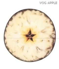 Test almidon fruta pepita tipo Lainburg estado 07