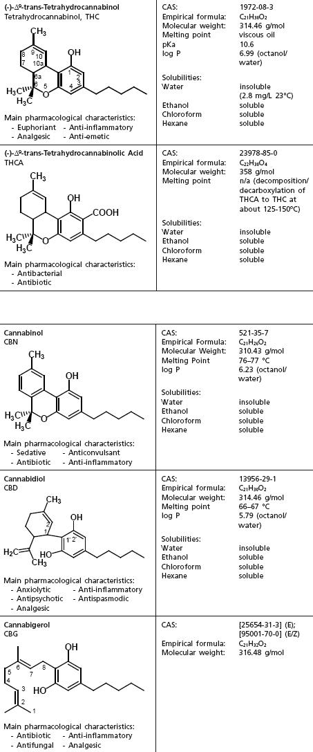 Cannabis sativa. Componentes químicos de importancia forense