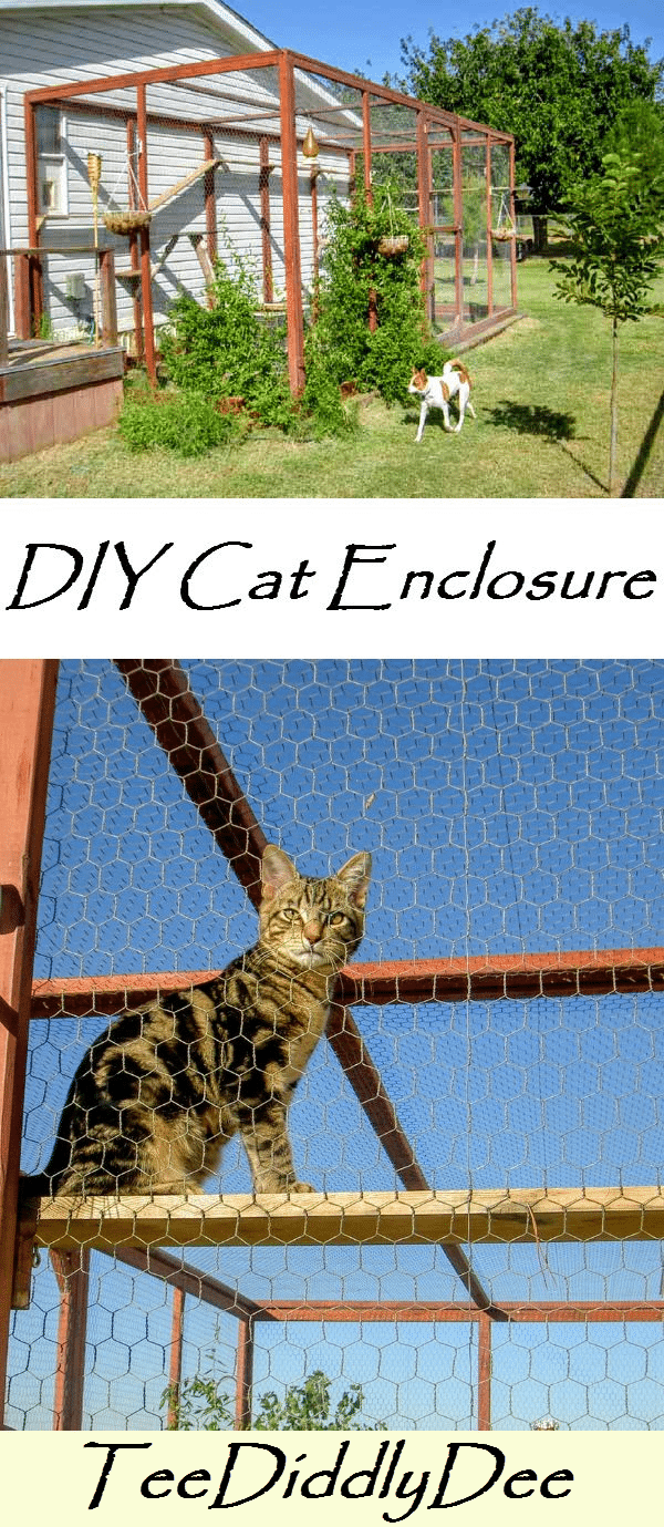 how to build an outdoor cat run
