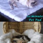 10 minute DIY fluffy pet pad/blanket