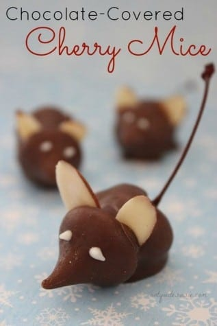 27-chocolate-covered-cherry-mice