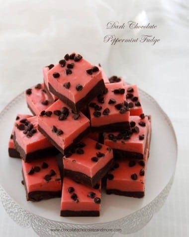 darkchocpeppermintfudge-600x750