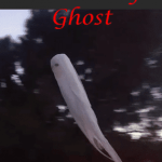 DIY Flying Axworthy Ghost for Halloween