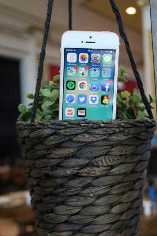 iPhone SE - 18