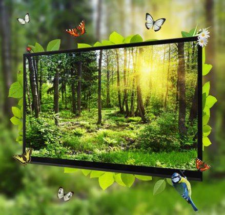 shutterstock_OlegDoroshin_TV paga_Radiodifusao_devices