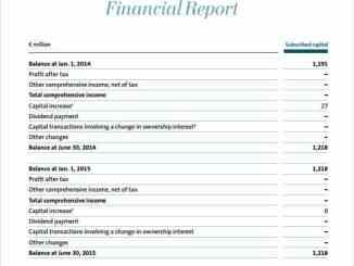 financial report template 141