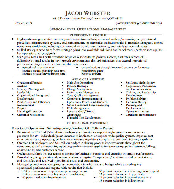 6  executive resume templates word