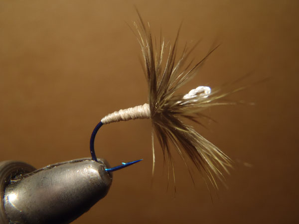 Sakasa Kebari Tied on an Eyeless Hook