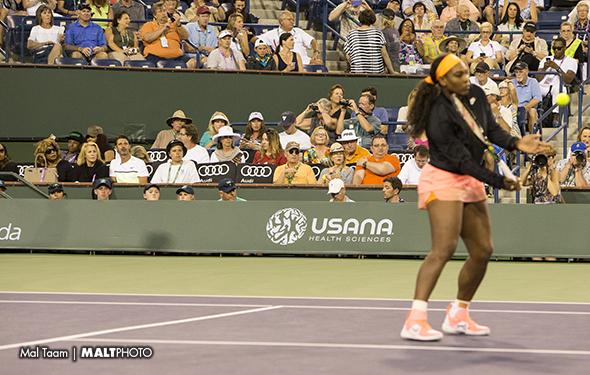 Serena IW 15 MALT2340
