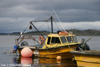 Fisher boat on dry land