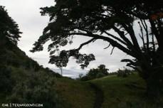 The trail just above Rio Encajonado