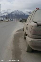 TdF - Ushuaia - road kill 15