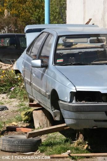 TdF - Ushuaia - road kill 16
