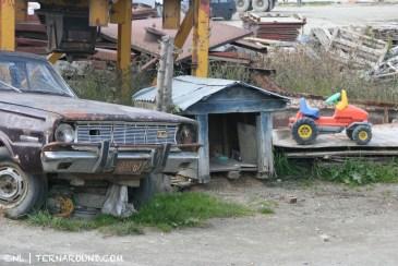 Dog house with car park