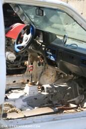 TdF - Ushuaia - road kill 6