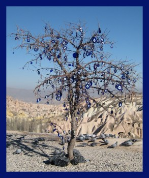 arbreoeil