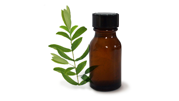 Manfaat Tea Tree Oil