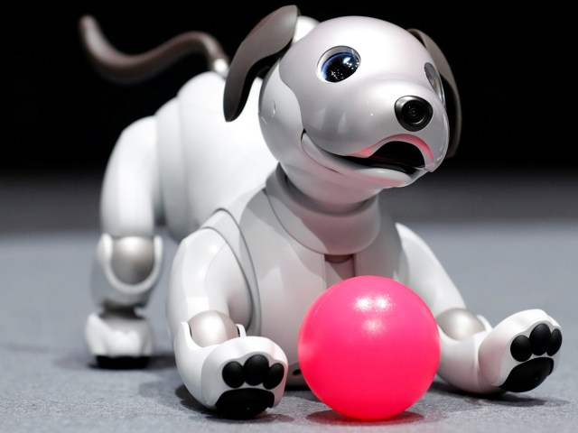 """Sony Corp's entertainment robot """"aibo"""" is pictured at its demonstration in Tokyo, Japan November 1, 2017. REUTERS/Kim Kyung-Hoon - RC1F45D36F00"""