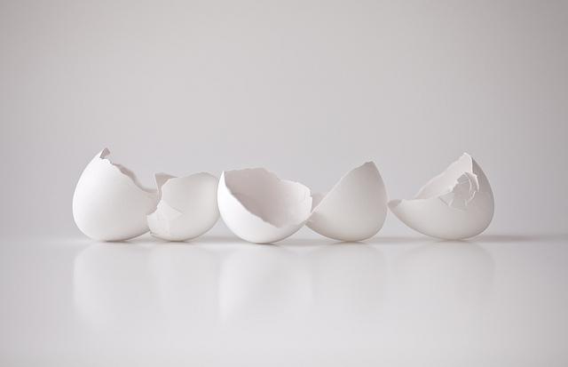 استخدامات قشر البيض