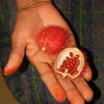 أغرب الفاكهة