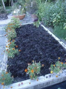 September is Composting Time!